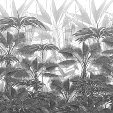 DEVON & DEVON Tapeta CASABLANCA BLACK & WHITE, kolekcia VITO NESTA