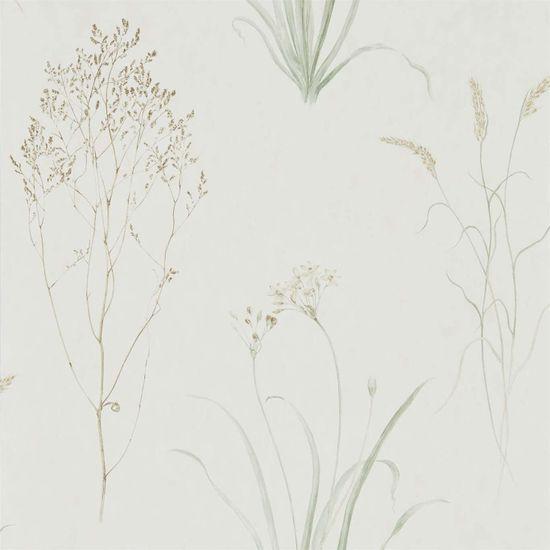 SANDERSON Tapeta Farský Grasses 216488, kolekcia Embleton BAY