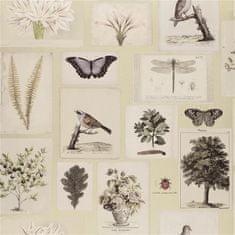 JOHN DERIAN Tapeta FLORA AND FAUNA CANVAS, kolekcia PICTURE BOOK PAPERS
