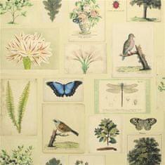 JOHN DERIAN Tapeta FLORA AND FAUNA PARCHMENT, kolekcia PICTURE BOOK PAPERS
