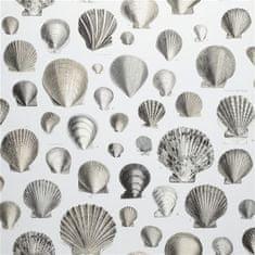 JOHN DERIAN Tapeta CAPTAIN THOMAS BROWNS SHELLS PEARL, kolekcia PICTURE BOOK PAPERS
