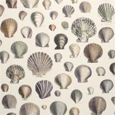 JOHN DERIAN Tapeta CAPTAIN THOMAS BROWNS SHELLS OYSTER, kolekcia PICTURE BOOK PAPERS