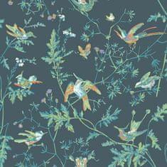Cole & Son Tapeta HUMMINGBIRDS 4014, kolekce ICONS