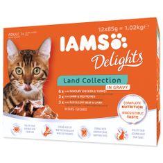 IAMS Kapsičky Cat výběr ze suchozemských mas v omáčce multipack 12x85 g
