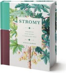 Steve Marsh: Stromy