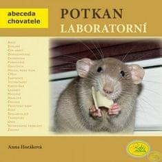 Anna Horáková: Potkan laboratorní