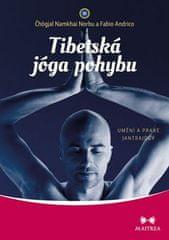 Čhögjal Namkhai Norbu: Tibetská jóga pohybu - Umění a praxe jantrajógy