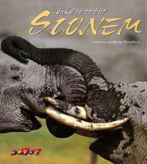 Christine a Michel Denis-Hout: Jaké je to být slonem