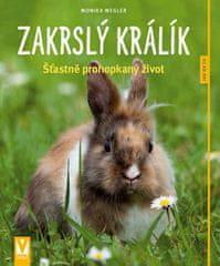 Monika Wegler: Zakrslý králík - Šťastně prohopkaný život