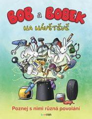 Libor Adam: Bob a Bobek na návštěvě - Poznej s nimi různá povolání