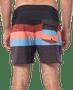 2 - Rip Curl moške kopalne kratke hlače Retro Sorbet (40,64 cm/16''), 32, večbarvne