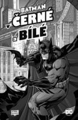 autorů kolektiv: Batman v černé a bílé