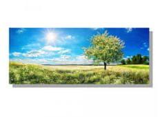 Dimex Obrazy na plátne - Kvitnúci strom 100 x 40 cm
