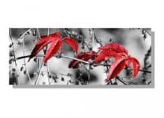 Dimex Obrazy na plátne - Červené listy v šedom 100 x 40 cm