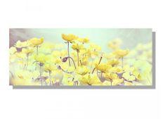 Dimex Obrazy na plátne - Aquarelové maky žlté 100 x 40 cm