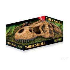 EXO TERRA dekorace Exo Terra T-Rex lebka