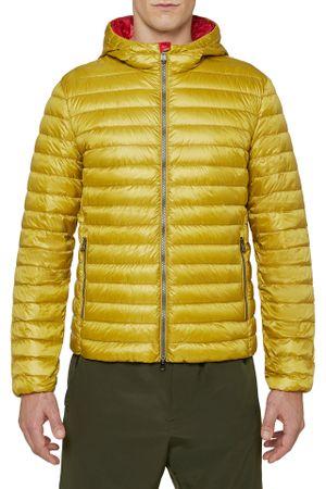 Geox moška bunda Warrens M0225B T2412, 50, rumena