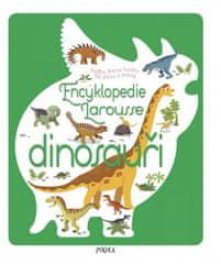 Sylvie Bézuelová: Encyklopedie Larousse - dinosauři