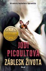 Jodi Picoultová: Záblesk života