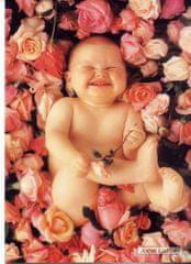 Anne Geddes Pohlednice , dítě v růžích