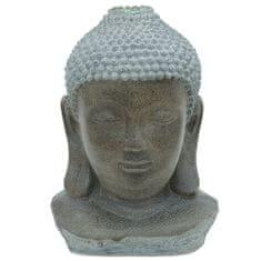 Europalms Kip budalha , glava, naravni videz