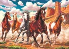 Art puzzle Puzzle Divoké koně v údolí 1000 dílků