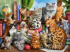 Castorland Puzzle Kočičí dům 2000 dílků