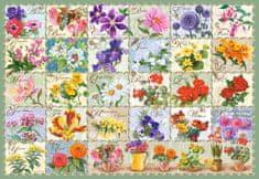 Castorland Puzzle Herbář květin 1000 dílků
