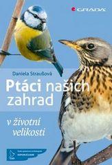 Daniela Straußová: Ptáci našich zahrad - v životní velikosti