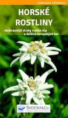 Horské rostliny - Nejkrásnější druhy rostlin Alp a dalších evropských hor