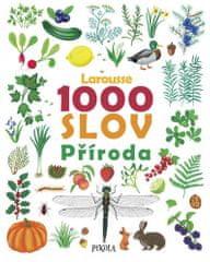 autorů kolektiv: 1000 slov – Příroda