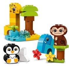 LEGO klocki DUPLO® 10934 Zwierzęta - zestaw kreatywny