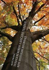 Aleš Franc: Teologické kořeny a současná teologie - Nové apoštolské reformace