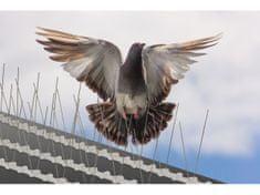 Ochrana fasád proti ptactvu
