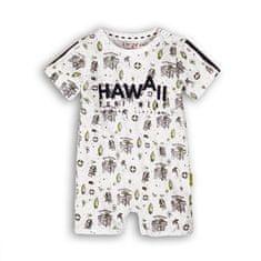 Dirkje fantovski pajac Hawaii