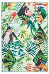 Obsession Kusový koberec Exotic 212 multi