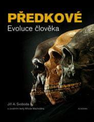 Jiří Svoboda: Předkové Evoluce člověka