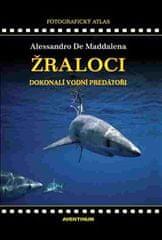 Alessandro De Maddalena: Žraloci, dokonalí vodní predátoři
