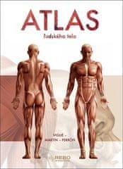 Jordi Vigué: Atlas ľudského tela
