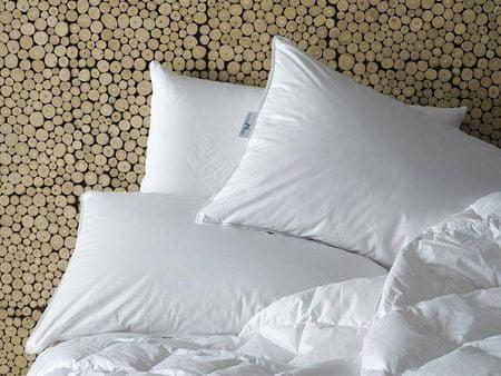 Daunen Step Sztywniejsza poduszka z pierza 30 x 40 cm w bawełnianym pokrowcu, trzykomorowa