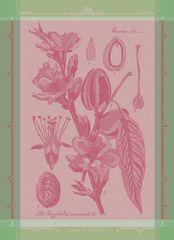 Garnier Thiebaut FLEURS D'AMANDIER Rose Utěrka 56 x 77 cm