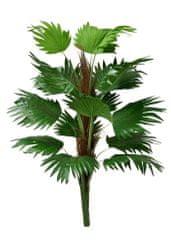EverGreen Palma vejárová 120 cm, kmeň s kokosovým vláknom