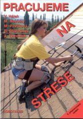 Hájek a kolektiv: Pracujeme na střeše