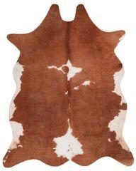 Obsession Kusový koberec Toledo 195 brown