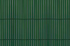 TENAX SPA Sztuczna trzcina COLORADO 1m x 5m, kolor zielony
