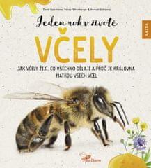 David Gerstmeier: Jeden rok v životě včely - Jak včely žijí, co všechno dělají a proč je královna matkou všech včel