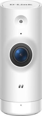 Kamera bezpieczeństwa IP kamera D-Link DCS-8000LHV2 (DCS-8000LHV2/E) opieka nad dziećmi i zwierzętami w domu
