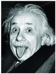 EuroGraphics Puzzle 1000 db Einstein - Langue