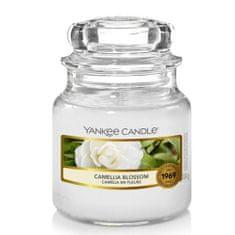 Yankee Candle Aromatyczna świeca Classic mała Kamelia Kwiat 104 g