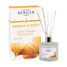 Lampe Berger Stekleni difuzor Maison Berger Paris, Svež tonik, 180 ml, palice vrbe